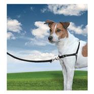 Easy Walk - Hunde Geschirr, Small, schwarz
