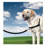 Easy Walk - Hunde Geschirr, Large Schwarz