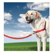 Easy Walk - Hunde Geschirr, Large, rot