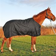 Turnout Weidedecke, Regendecke, Outdoor- Winterdecke für Pferde, 300g, Größe 145