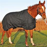 Turnout Weidedecke, Regendecke, Outdoor- Winterdecke für Pferde, 300g, Größe 155