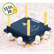 Küken Wärmeplatte Comfort 25x25cm / 15W