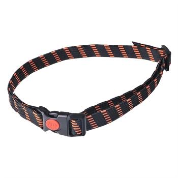 Dogtrace elastische halsband 25mm oranje