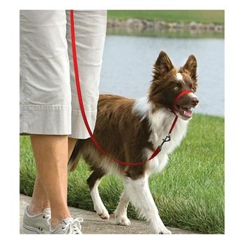 Easy Walk - Hunde Halfter, Hundehalfter, Headcollar - Medium, rot