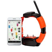 DogTrace GPS X30T Ersatzhalsband, Zusatzhalsband, Ersatzsender/-empfänger für Hundeortungsgerät