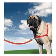 Easy Walk - Hunde Geschirr, X-Large, rot