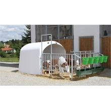 580120-1-großraumkaelberhuette-calfhouse-premium-4-5-inkl-umzaeunung.jpg