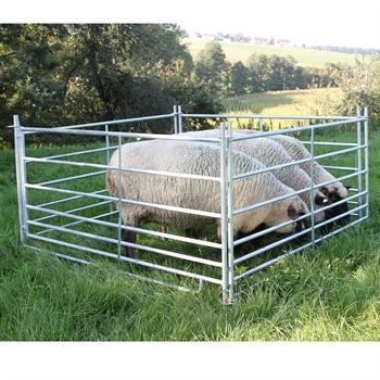 4x Steckfix-Horde für Schafe, 1,83 m x 0,92 m, verzinkt