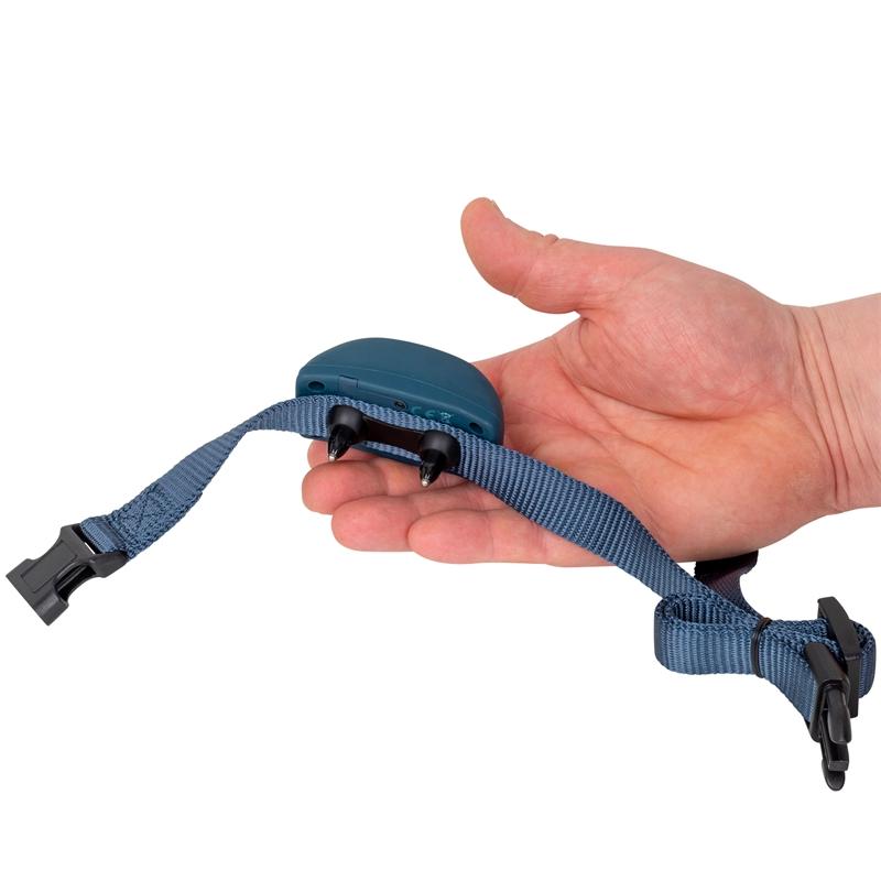 2115-petsafe-pbc19-16001-hunde-antibellhalsband-2021.jpg