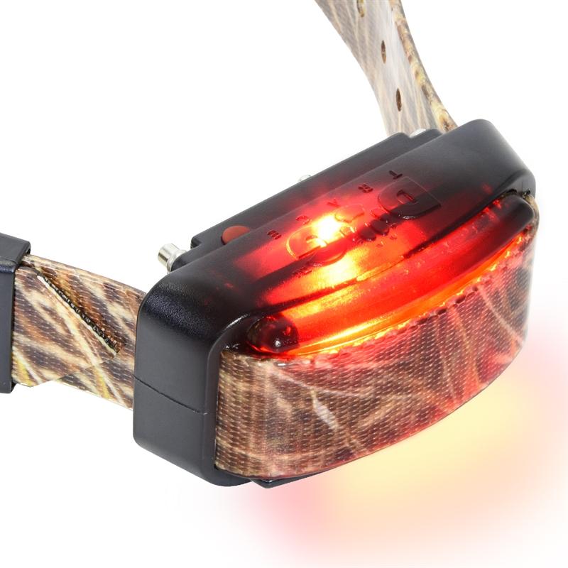 24340-Halsband-mit-Ortungsfunktion-einstellbares-LED-Licht.jpg