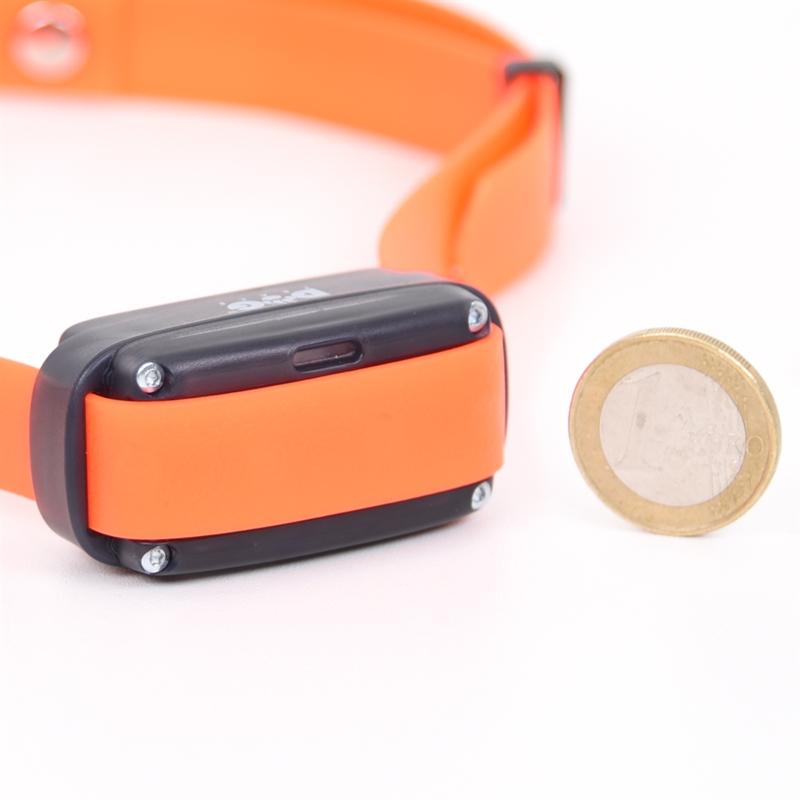 24346-DogTrace-Zusatzhalsband-ONE-sehr-kleine-Abmessungen.jpg