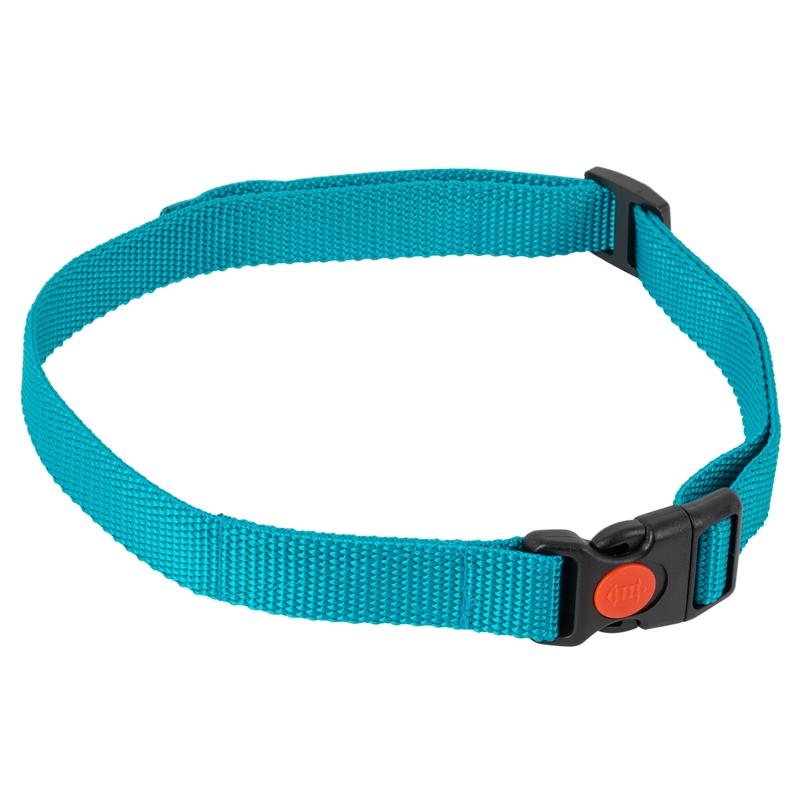 24491-1-dogtrace-ersatzhalsband-fuer-d-control-mini-ferntrainer.jpg