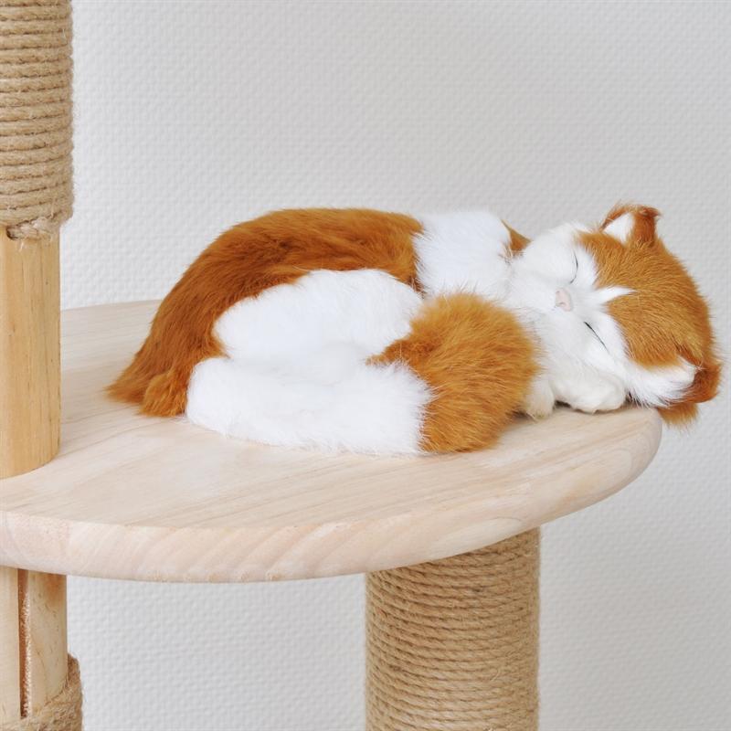 26506-Kratzbaum-Holz-gross-fuer-Kater-fun-toy-scratcher-for-cats-Simba.jpg