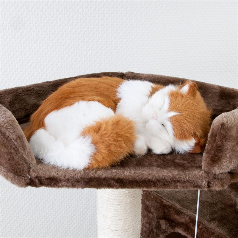 26610-Ollie-Kratzbaum-gross-fuer-Kater-cat-scratcher-fun-braun.jpg