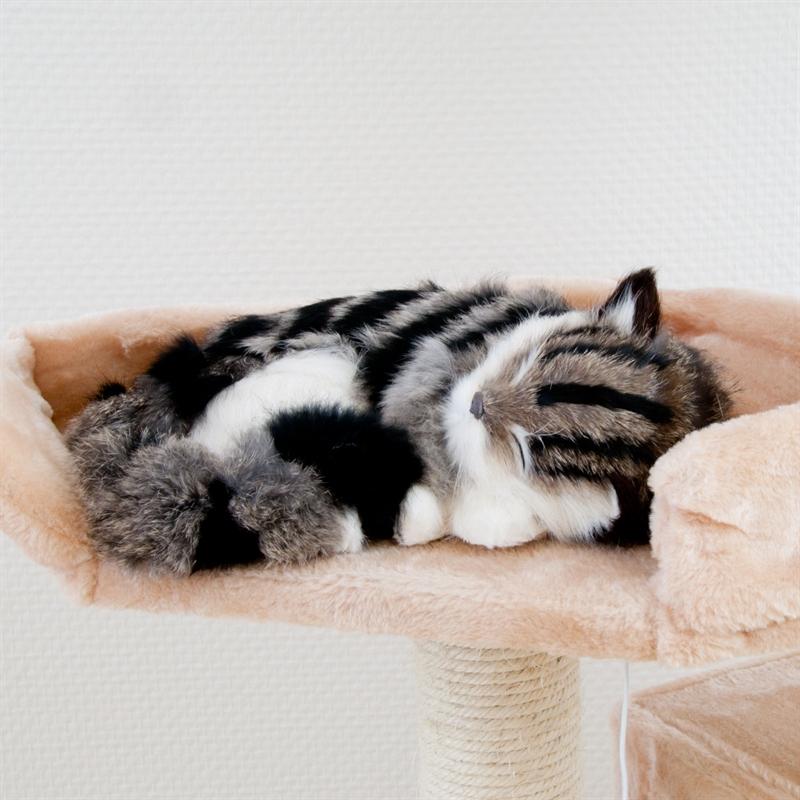 26610-Ollie-Kratzbaum-gross-fuer-Kater-cat-scratcher-fun-rosa.jpg