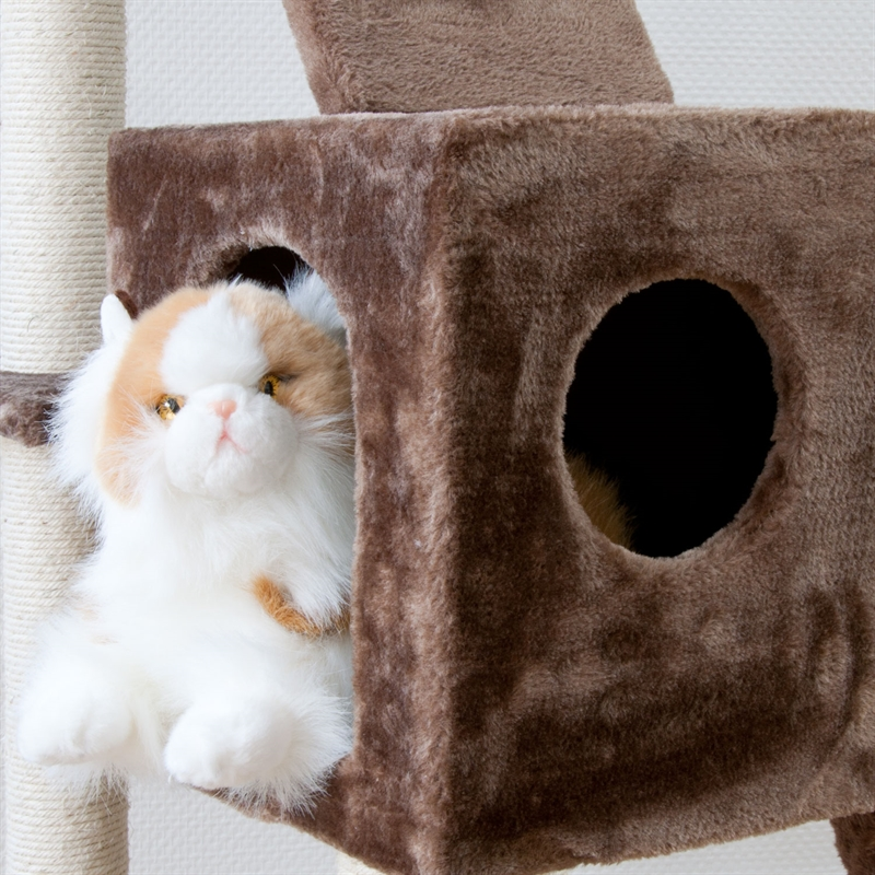 26610-Ollie-brown-Kratzbaum-gross-Kletterbaum-fuer-Katzen-cat-tower-climbing-toys.jpg