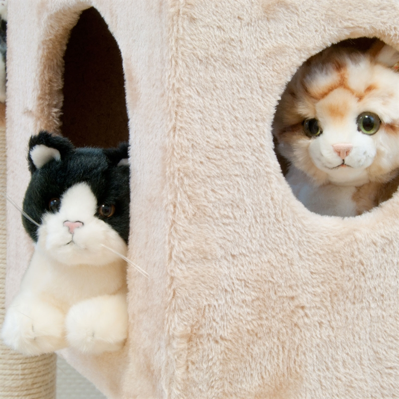 26610-Ollie-rosa-Katzen-Moebel-buy-cat-scatcher-tree-affordable.jpg