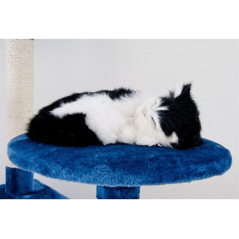 26620-Aspen-Kratzbaum-gross-fuer-Kater-cat-scratcher-fun-blau.jpg