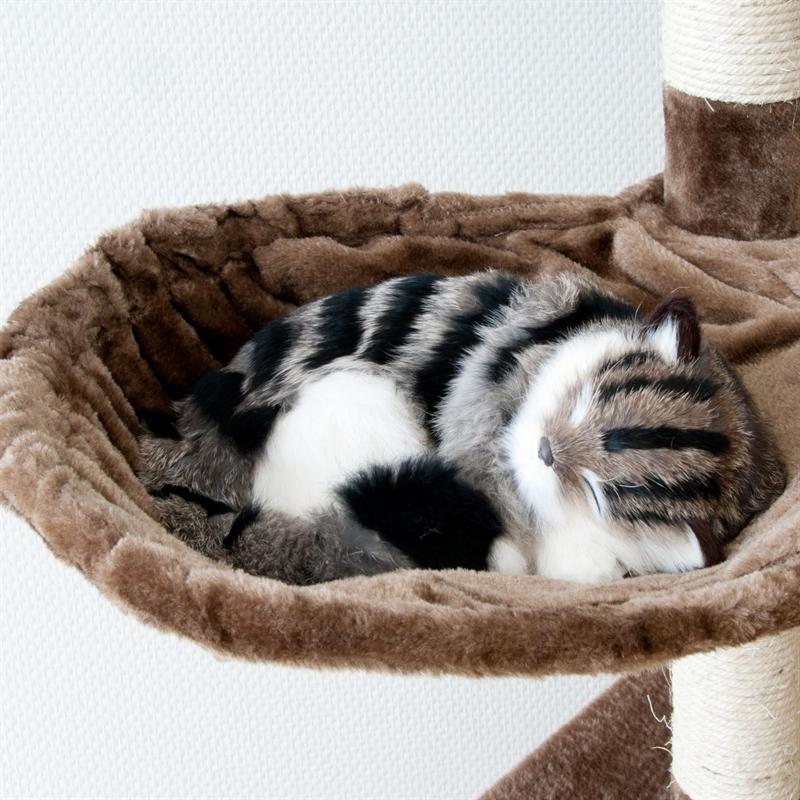 26620-Aspen-braun-Kratzen-spielen-Kratzbaum-cat-tower-toy.jpg