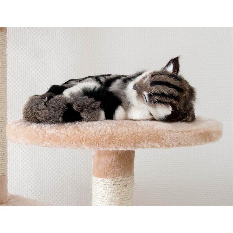 26620-Aspen-rosa-Kratzbaum-gross-Kletterbaum-fuer-Katzen-cat-tower-climbing-toys.jpg