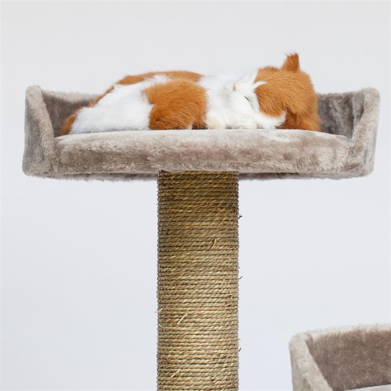 Großartig Katze 6 Drahtkonfiguration Fotos - Elektrische ...