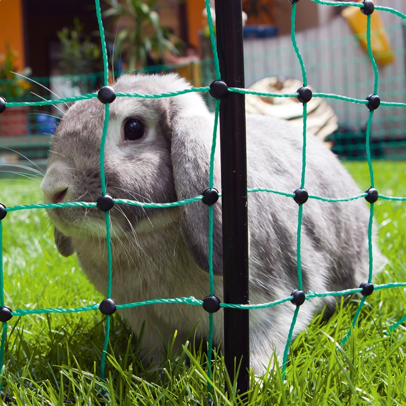 27222-1-Kaninchengehege-Meerschweinchen-Gartengehege-Auslauf-Kleintiere.jpg