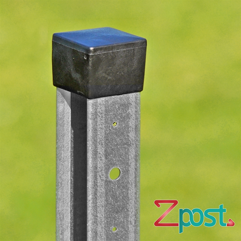 42220.4-Detailansicht-ZPfofilpfahl-Z-Profilpfahl-ZPost-1m-mit-Schutzkappe.jpg