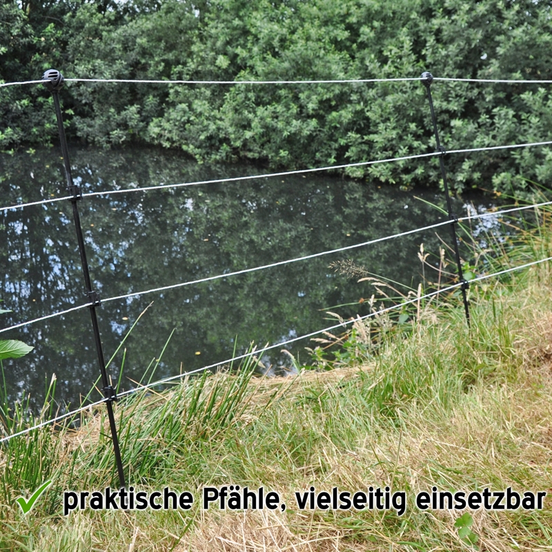 42556-Kleintierpfaehle-Fischreiherabwehr-Hundezaun-Haustierzaun-VOSS.miniPET.jpg