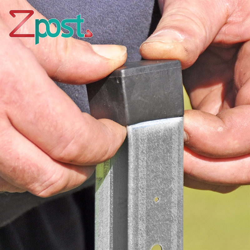 43159-ZPfahl-Z-Pfahl-Z-Profilpfahl-fuer-Weidezaeune-Elektrozaun.jpg