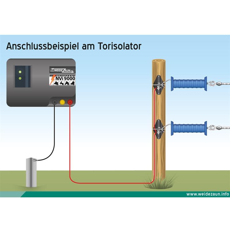44261-Infografik-Weidezaun-Torgriff.jpg