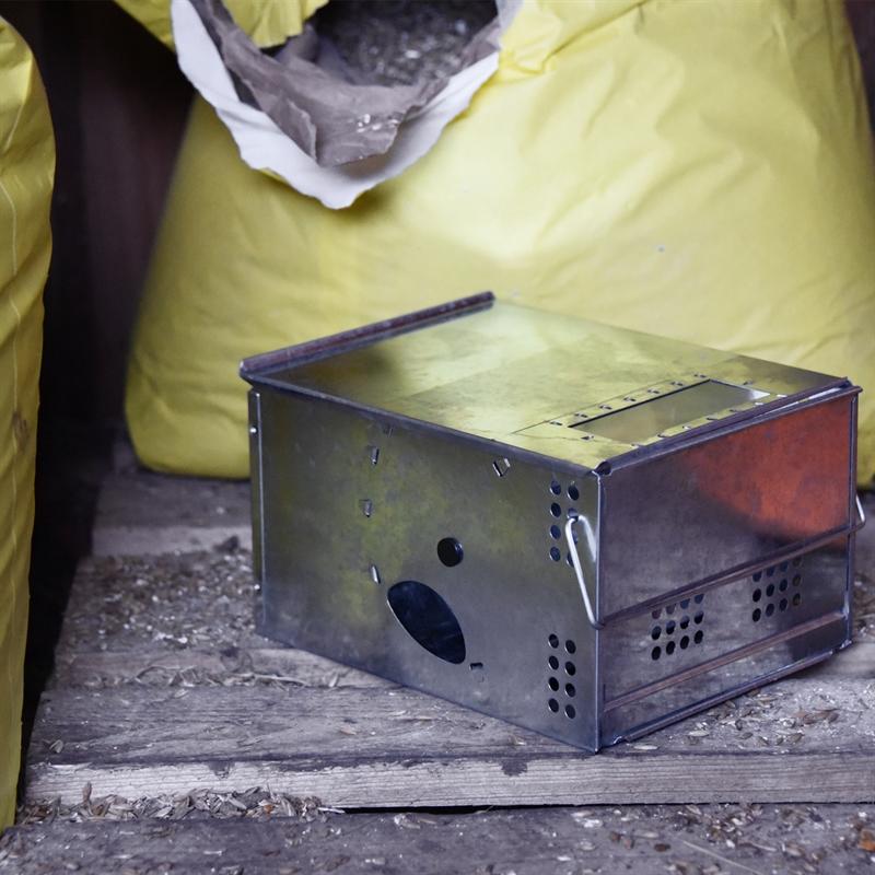 45398-Mausfalle-CATCH-ALL-Lebendfalle-in-der-Futterkammer-Speisekammer.jpg