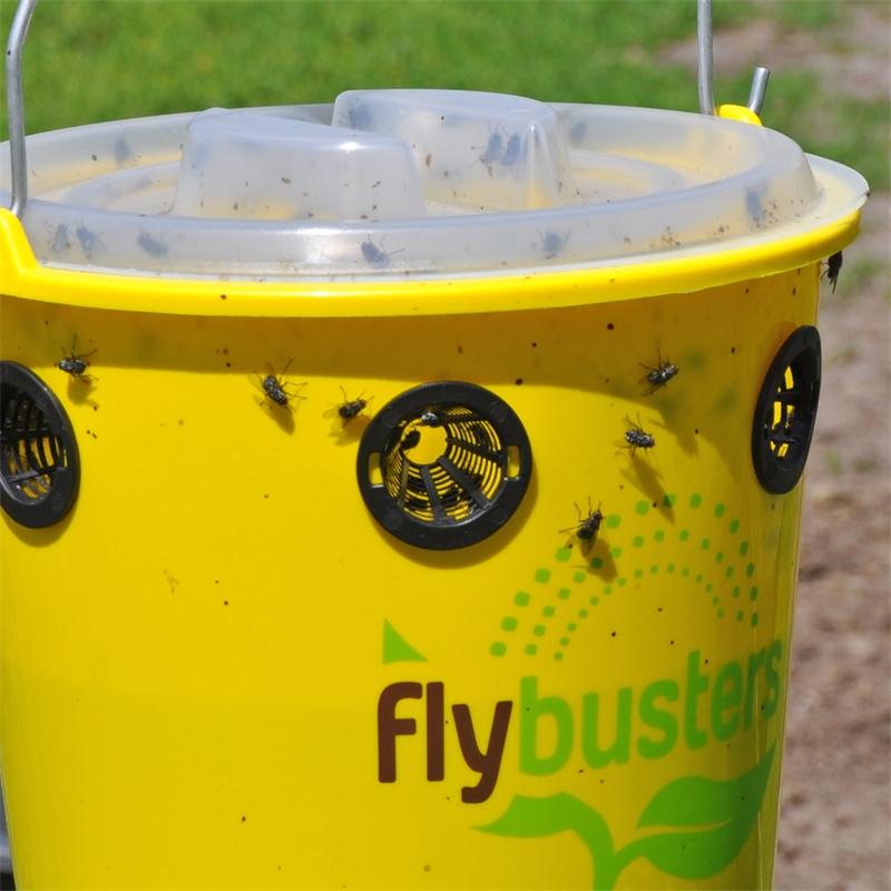 500138-flybustersfalle-fliegenfalle-pferdeweide-praxisbild.jpg