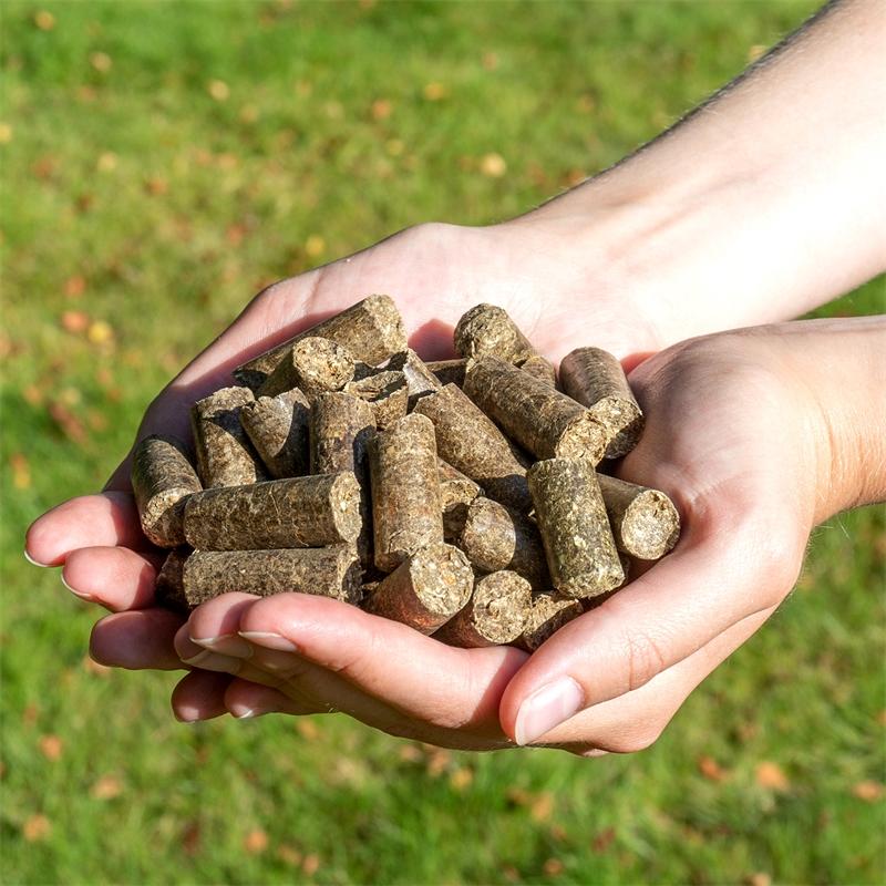 500530-voss-vital-snack-grainfree-apfelwiese-pferde-leckerlie.jpg