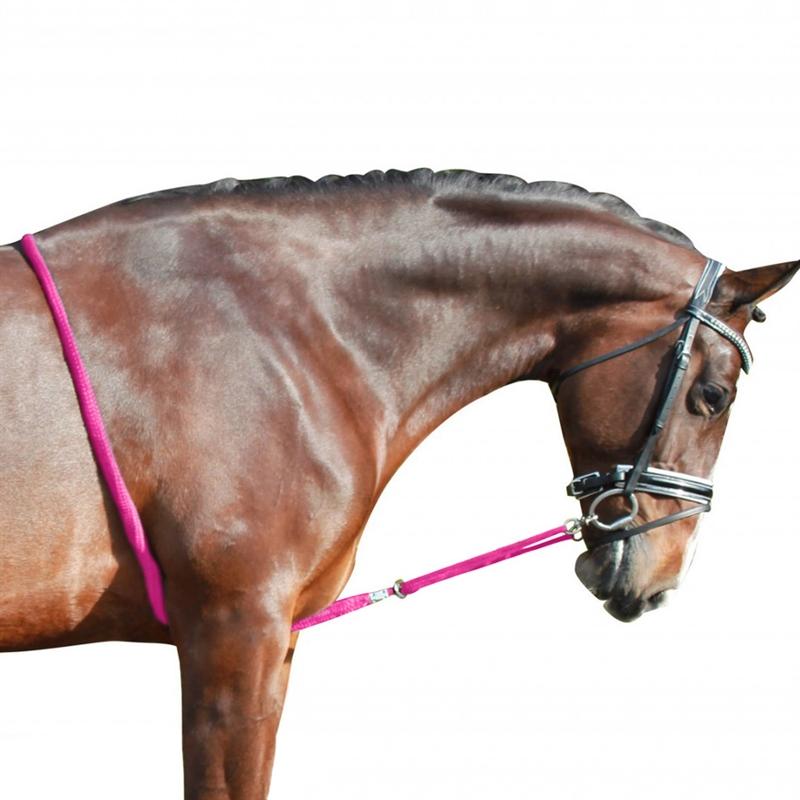 501517-2-longier-hilfe-verstellbar-fuer-ponys-und-pferde-fuchsia-pink-rosa.jpg