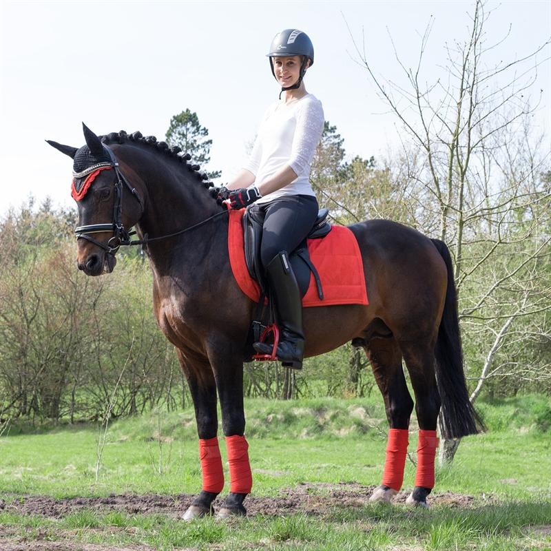 505350-8-pferdeartikel-puff-pad-satteldecken.jpg