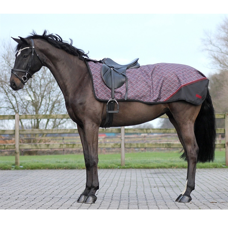 505352-ausreitdecke-turnout-luxus-fleece-qhp-paisley-1.jpg