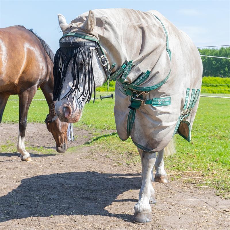 505460-qhp-pferde-und-pony-fliegen-stirnband-mit-kehlriemen-schwarz-mit-schnalle.jpg