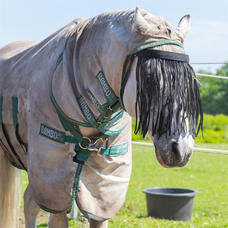 505460-qhp-pferde-und-pony-fliegen-stirnband-mit-kehlriemen-schwarz-schutz-vor-fliegen.jpg