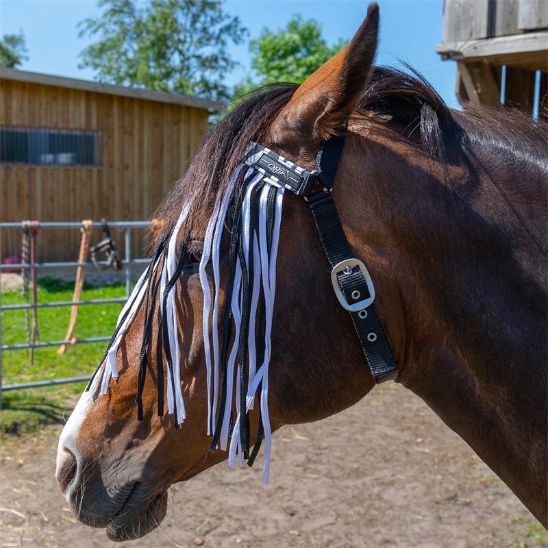 505460-qhp-pferde-und-pony-fliegen-stirnband-mit-kehlriemen-zebra-bremsenschutz.jpg