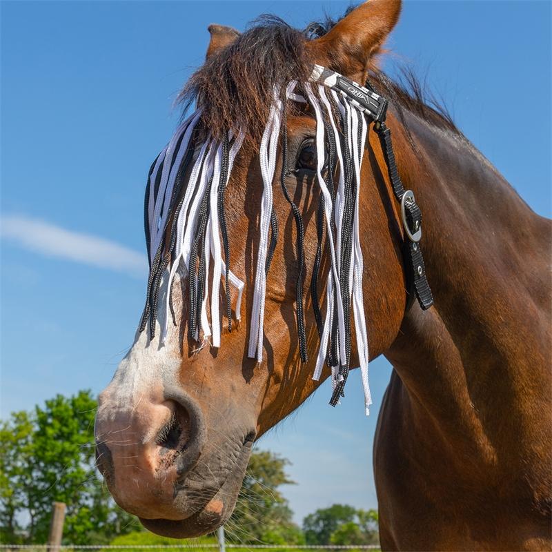 505460-qhp-pferde-und-pony-fliegen-stirnband-mit-kehlriemen-zebra-schnallenbefestigung.jpg