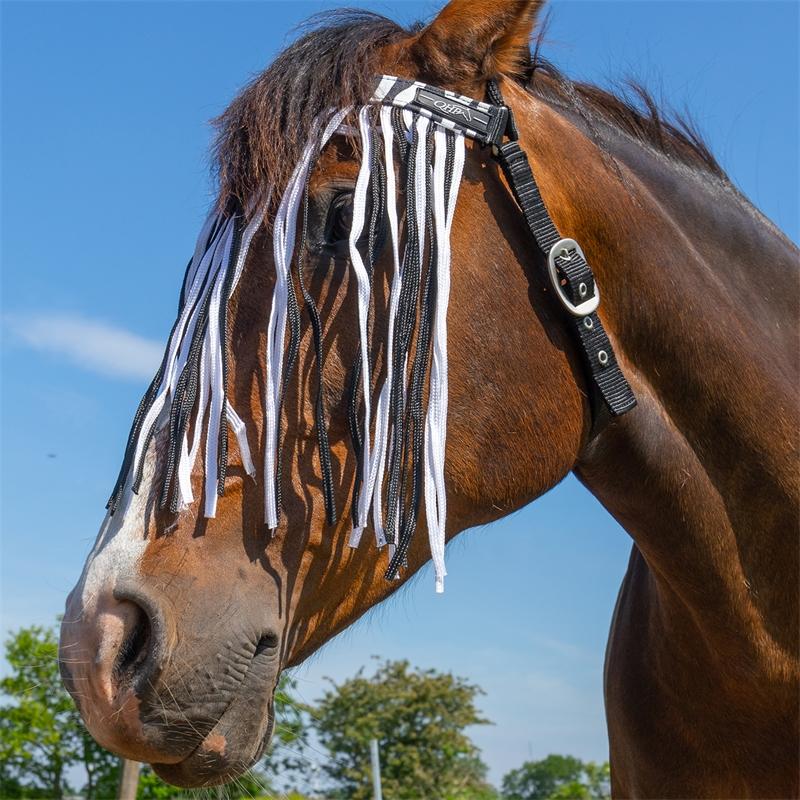 505460-qhp-pferde-und-pony-fliegen-stirnband-mit-kehlriemen-zebra-zweifarbig.jpg