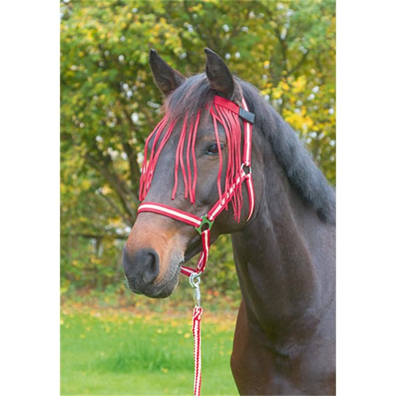 505511-fliegen-fransenband-dunkelrot-pony-001.jpg