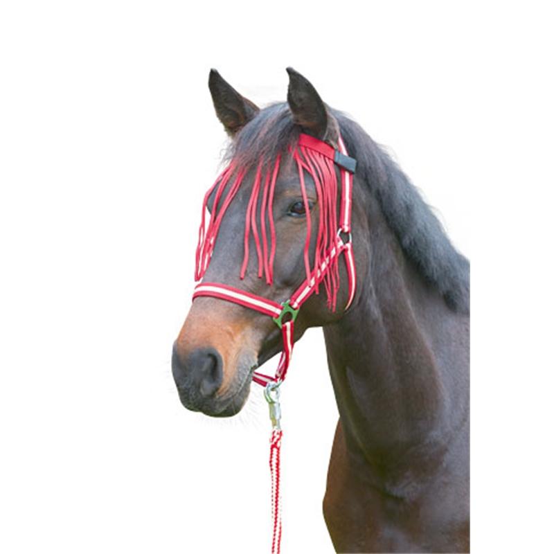 505511-fliegen-fransenband-dunkelrot-pony-002.jpg