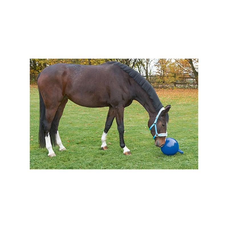 508010-spielball-fuer-pferde-galerie-002.jpg