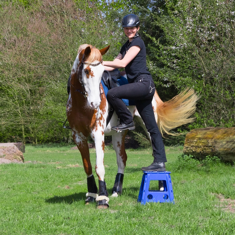 508020-8-pferdeartikel-hocker.jpg