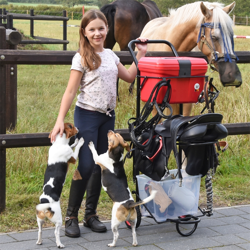 509200-voss-farming-sattelwagen-apollo-fuer-pferde.jpg