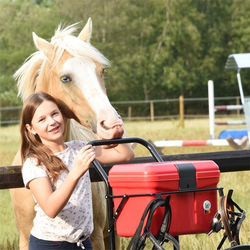 509202-voss-farming-sattelcaddy-putzwagen-apollo-fuer-pferde-pink.jpg