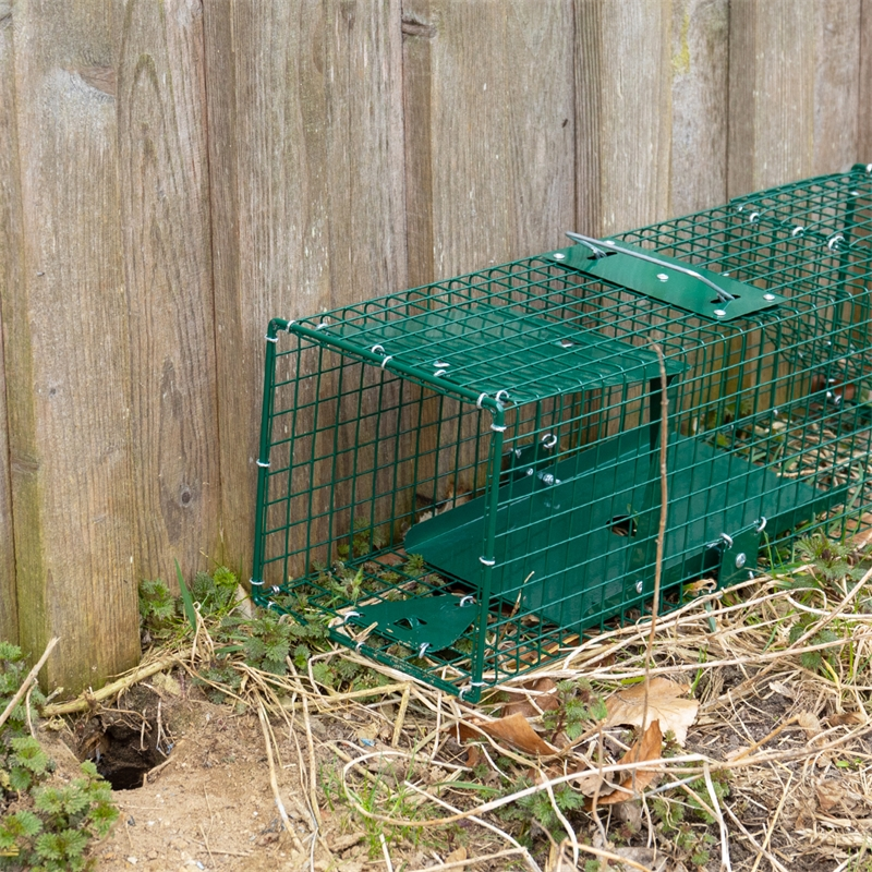 531050-voss-farming-lebendfalle-rattenfalle-kleintierfalle-praxisbild-8.jpg