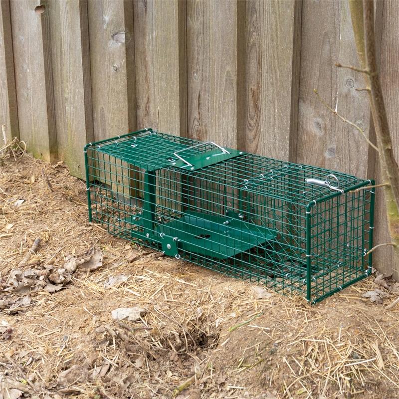 531050-voss-farming-lebendfalle-rattenfalle-kleintierfalle-praxisbild-9.jpg