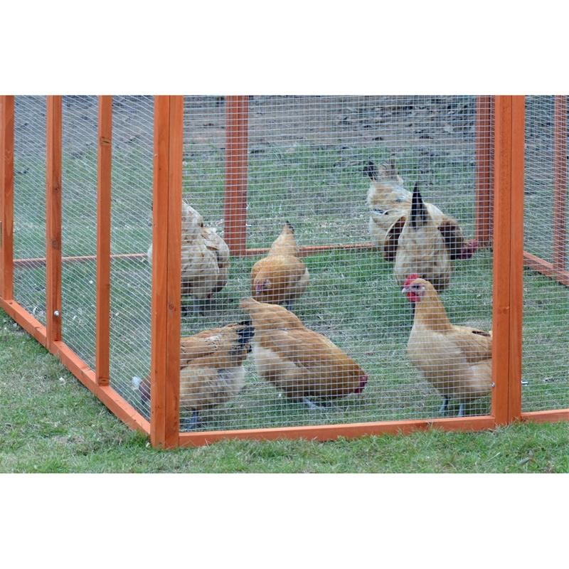 559202-voss-farming-huehnerstallerweiterung-freilauf.jpg
